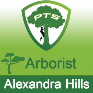 Pro Tree Lopping Arborist Alexandra Hills