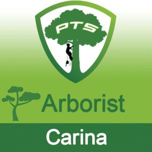 Pro Tree Lopping Arborist Carina