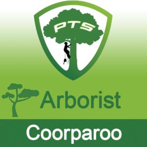 Pro Tree Lopping Arborist Coorparoo