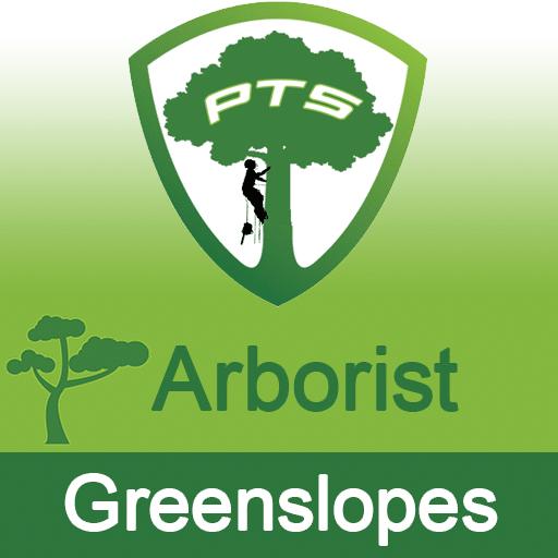Pro Tree Lopping Arborist Greenslopes