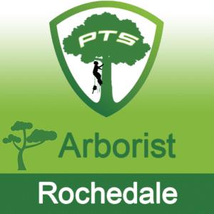 Pro Tree Lopping Arborist Rochedale