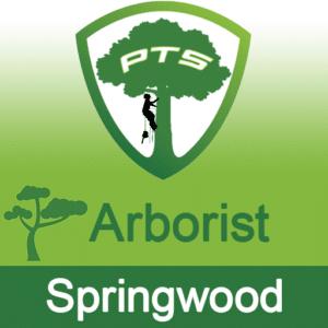 Pro Tree Lopping Arborist Springwood