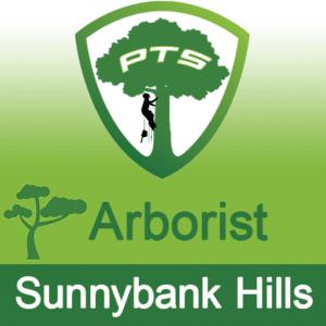 Pro Tree Lopping Arborist Sunnybank Hills