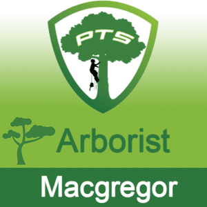 Pro Tree Lopping Arborist Macgregor