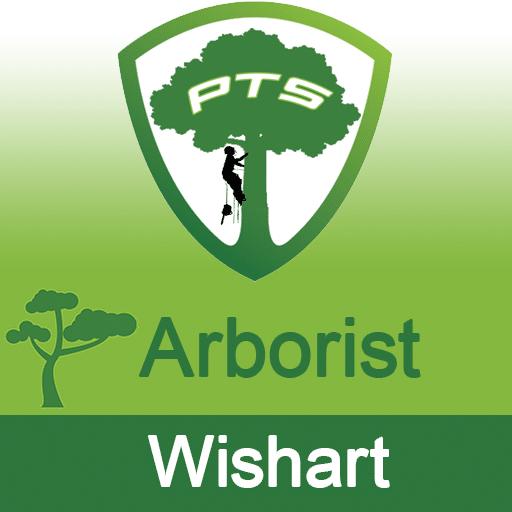 Pro Tree Lopping Arborist Wishart